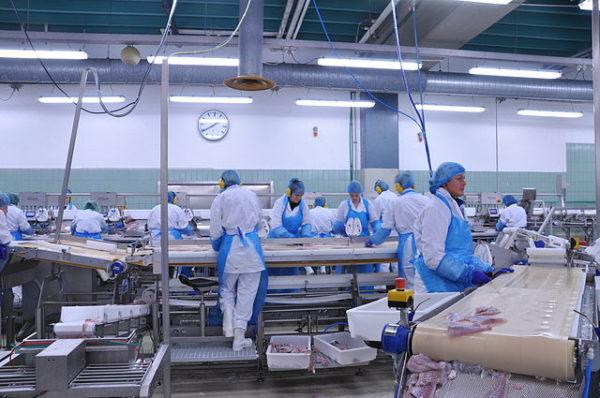Bảo quản sản phẩm theo thực hành sản xuất tốt