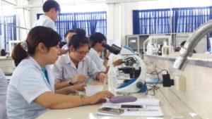 Nhân viên có kiến thức chuyên môn đến ngành dược