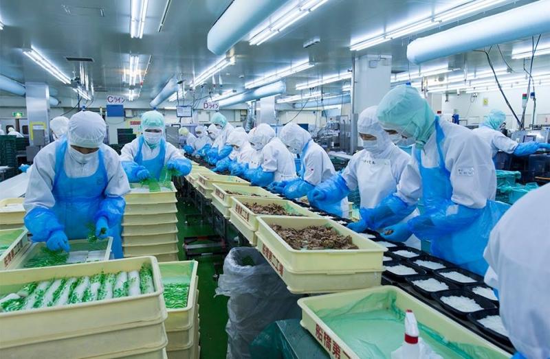 Tiêu chuẩn xây dựng nhà xưởng trong sản xuất thực phẩm
