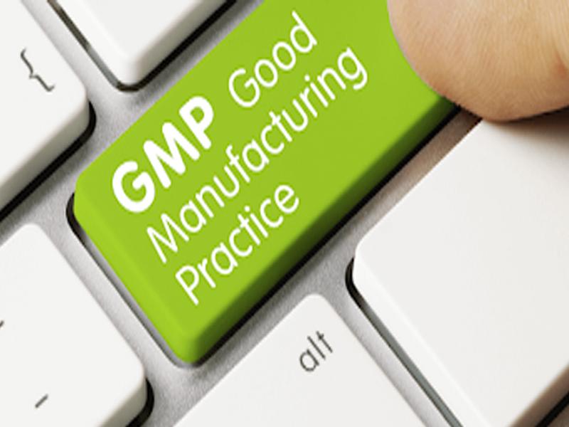 GMP- thực hành sản xuất tốt